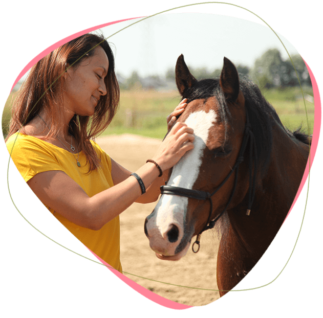 individuele-coaching-met-paarden-in-noord-holland