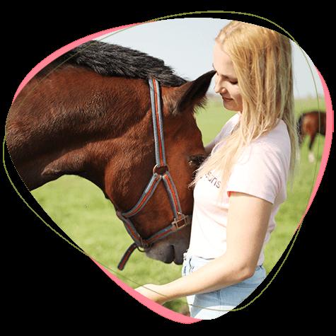 ontdek-je-veerkracht-kennismakingssessie-paardencoaching