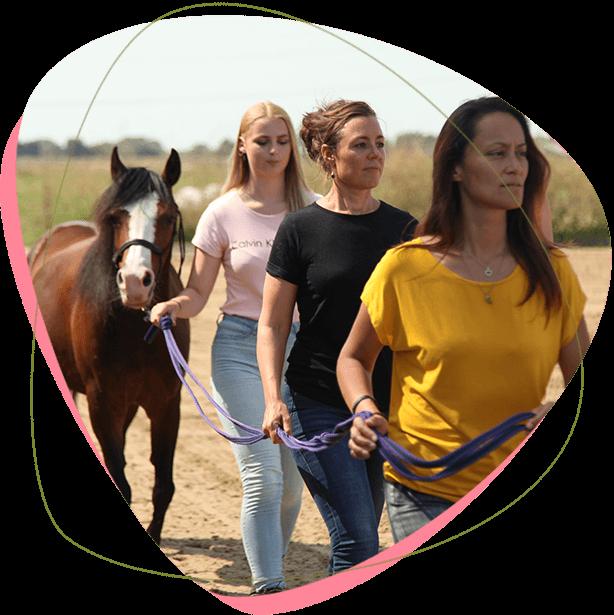 persoonlijke-coaching-paardencoach-in-noord-holland