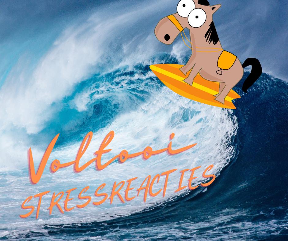 stressreacties-met surfboard